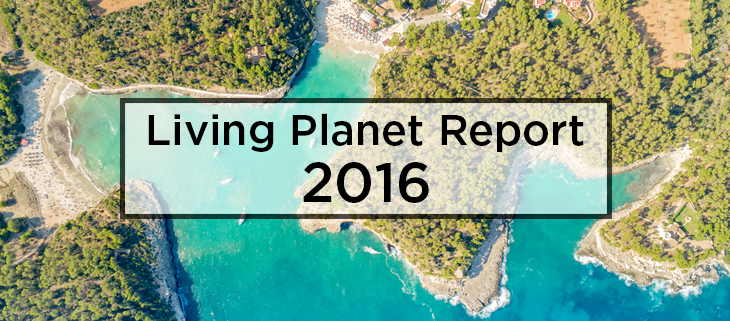island conservation living planet report