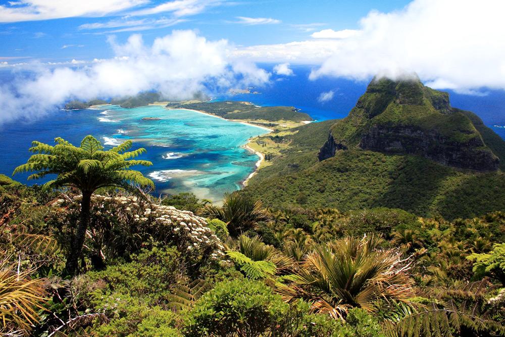 island conservation lorde howe island landscape