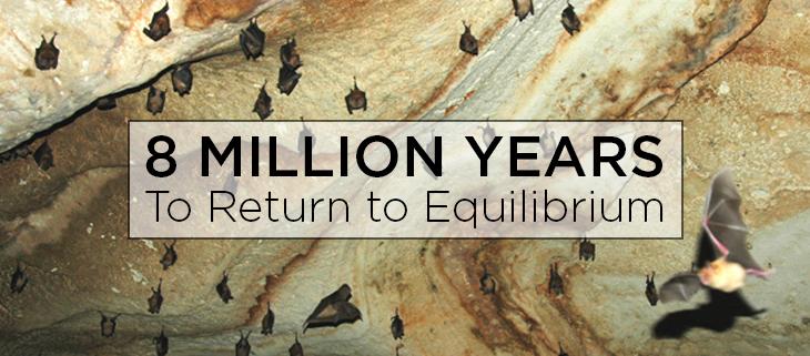 island conservation preventing extinctions bats equilibrium feat