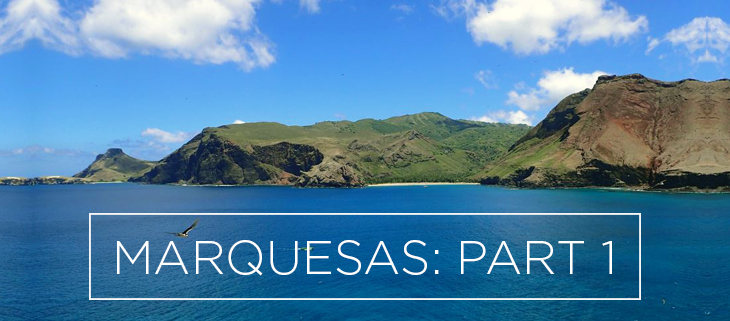 island conservation preventing extinctions marquesas