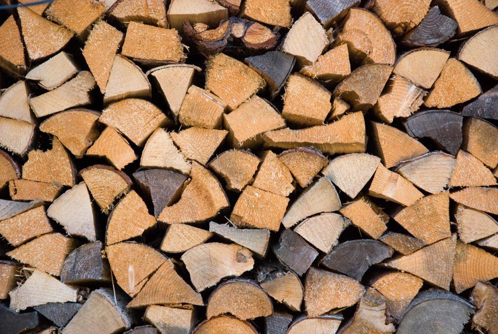 island conservation invasive species firewood