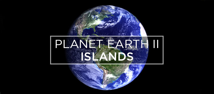 island conservation planet earth