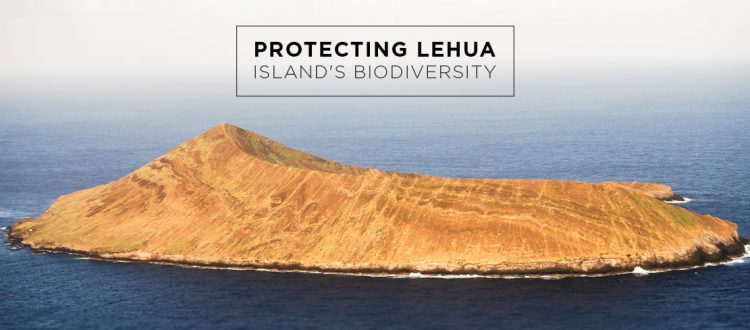 island conservation preventing extinctions lehua