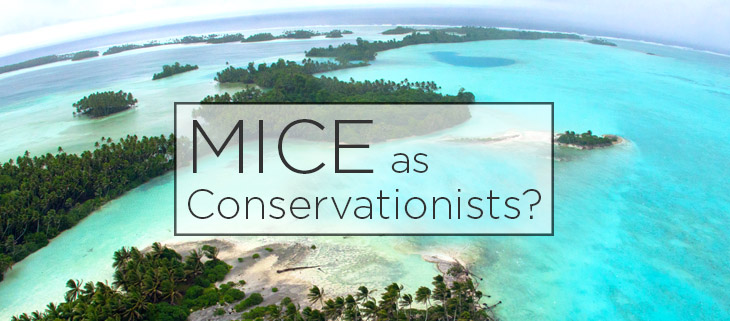 island conservation preventing extinctions mice as conservationists