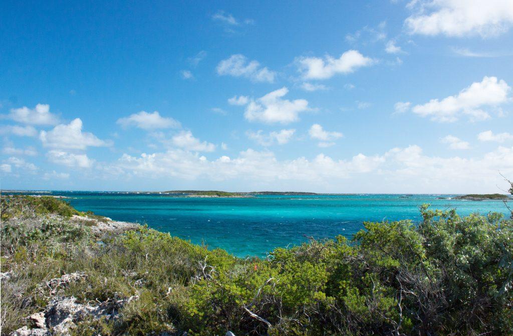 island conservation rochelle newbold lynn gape bahamas