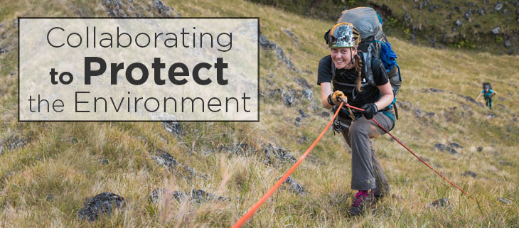 island conservation preventing extinctions women's environmental network