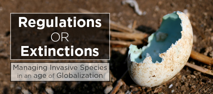 island conservation invasive species biosecurity globalization