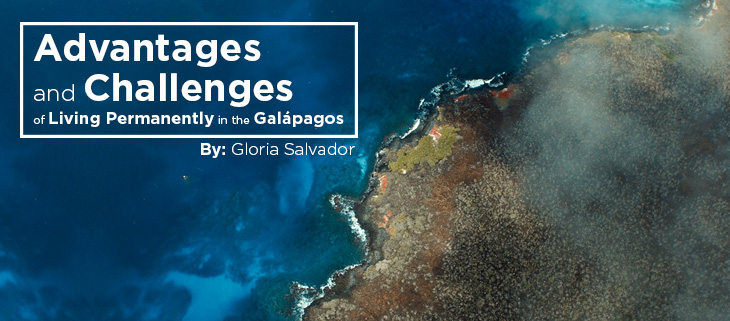 island-conservation-preventing-extinctions-galapagos-aerial-gloria-salvador-feat-2
