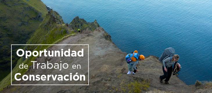 island-conservation-preventing-extinctions-oportunidad-trabajo-conservacion-feat