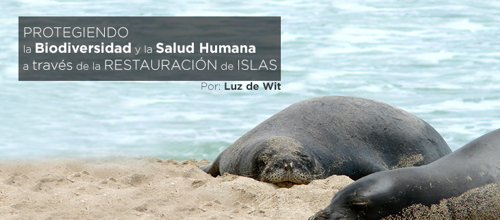island-conservation-preventing-extinctions-biodiversity-human-health-island-restoration-feat-spanish