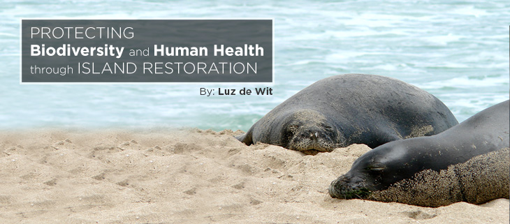 island-conservation-preventing-extinctions-biodiversity-human-health-island-restoration-feat