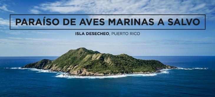 Isla Desecheo, Puerto Rico