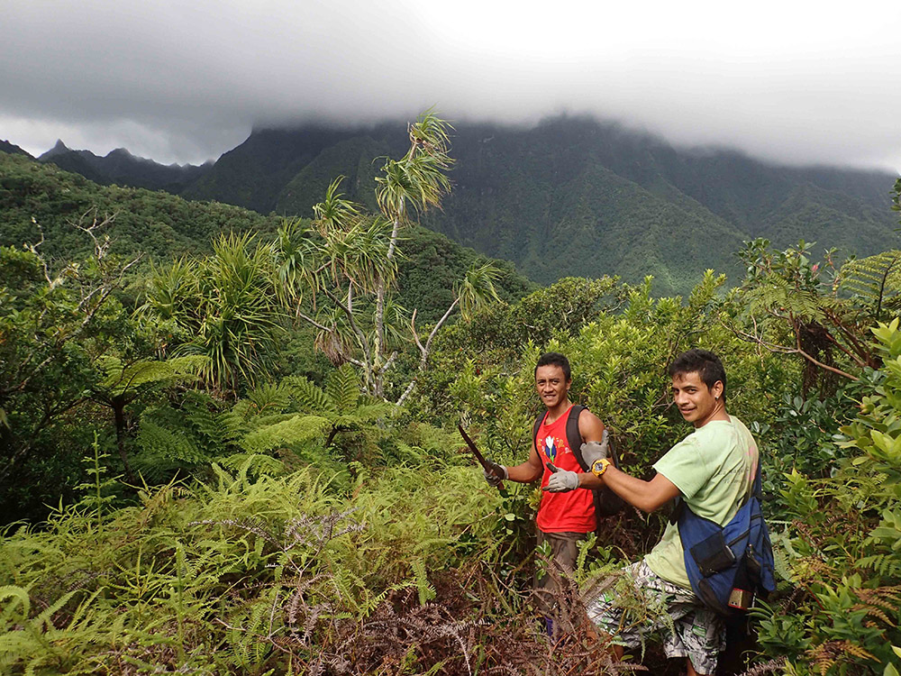 island-conservation-fatu-hiva-field-work Jason Zito