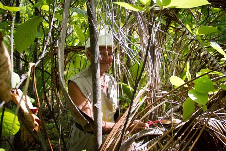 island-conservation-preventing-extinctions-Deacon-Tobia-tenarunga Polinesia Francesa