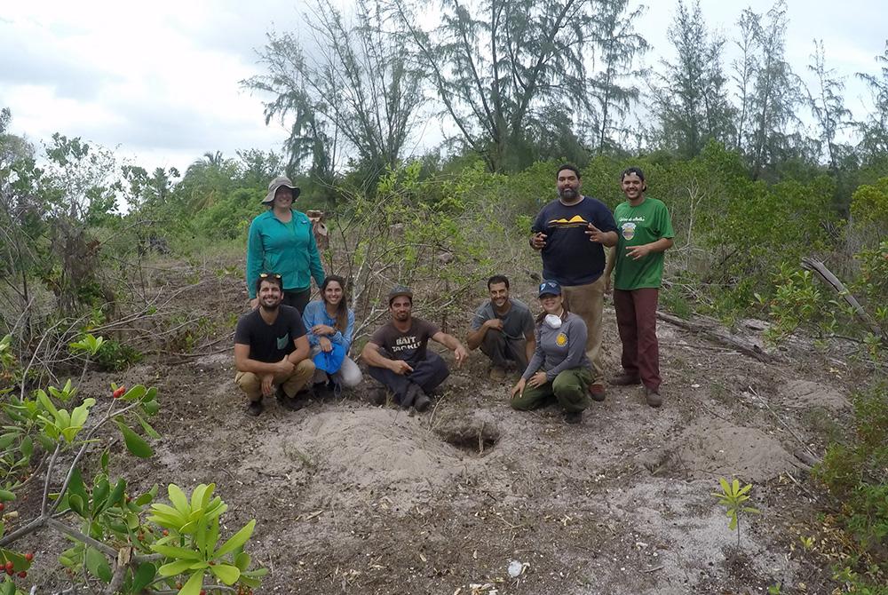 island-conservation-preventing-extinctions-mona-island-iguanas-restoration-team isla de mona