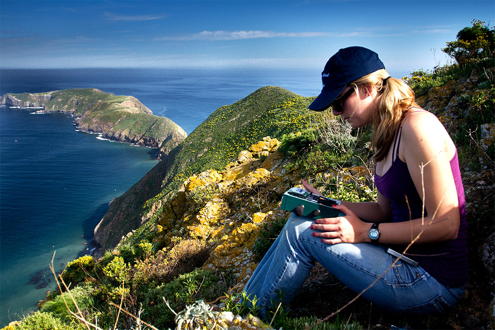 island-conservation-seabird-call-acoustic-monitoring-automated-recording-unit