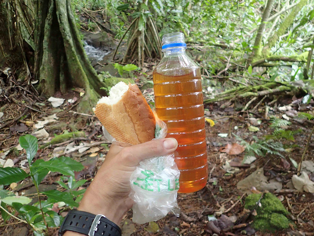 island-conservation-preventing-extinctions-fatu-hiva-honey-bread