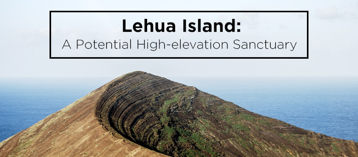 operation lehua island hawaii