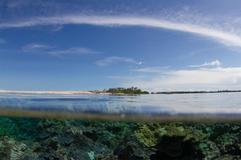 island-conservation-ocean-island-view-lehua-island