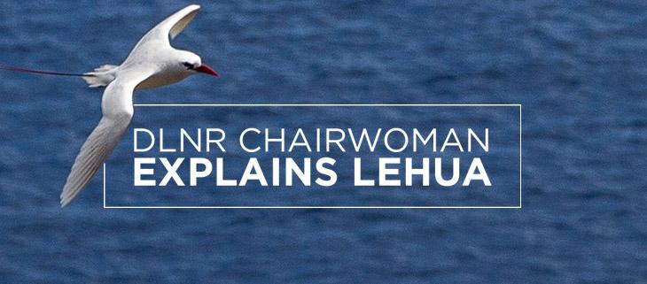 lehua island hawaii DLNR tropic bird