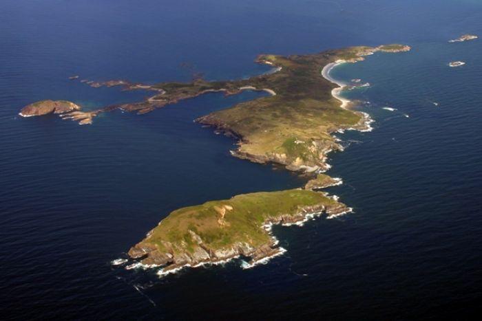island-conservation-seabirds-broughton-island