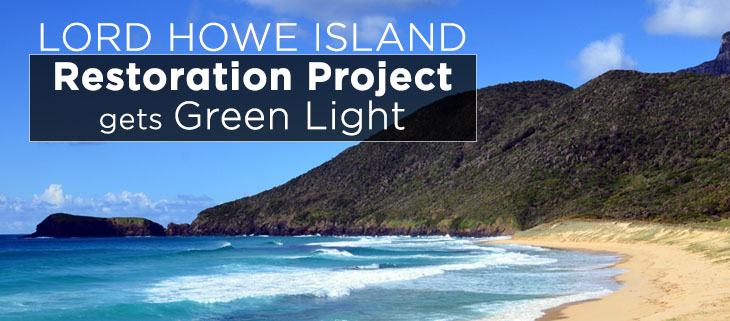 island-conservation-preventing-extinctions-lord-howe-island-green-light-feat
