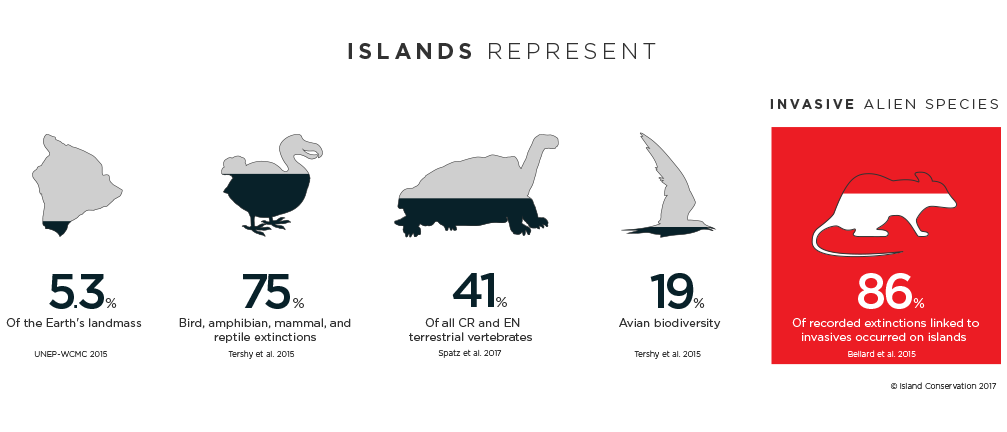 Island conservation infographic, berny tershy, dena spatz nick holmes