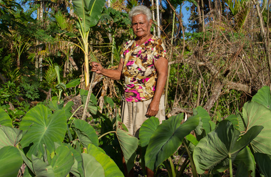 Island Conservation palau crops