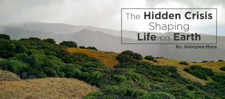 island-conservation-hidden-crisis-feat