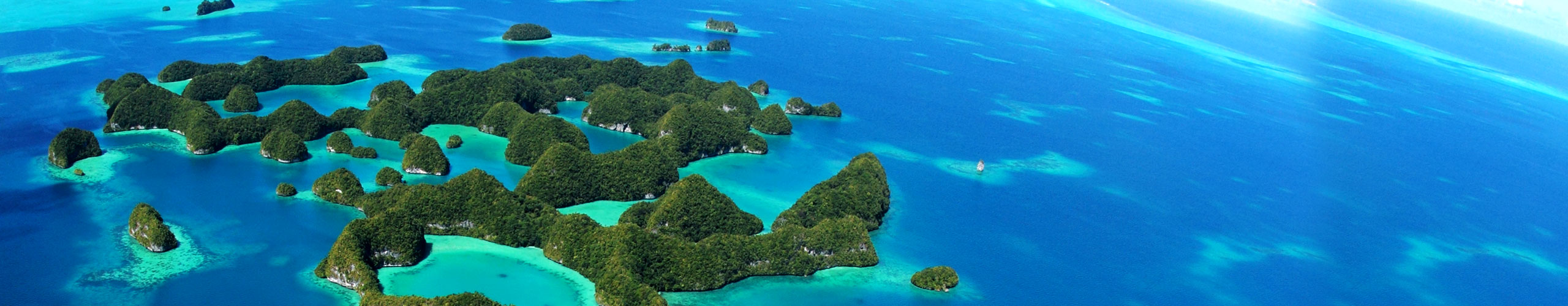 island-conservation-palau-islands-campaign-2017