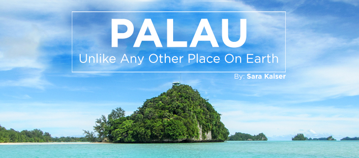 island-conservation-preventing-extinctions-palau-feat