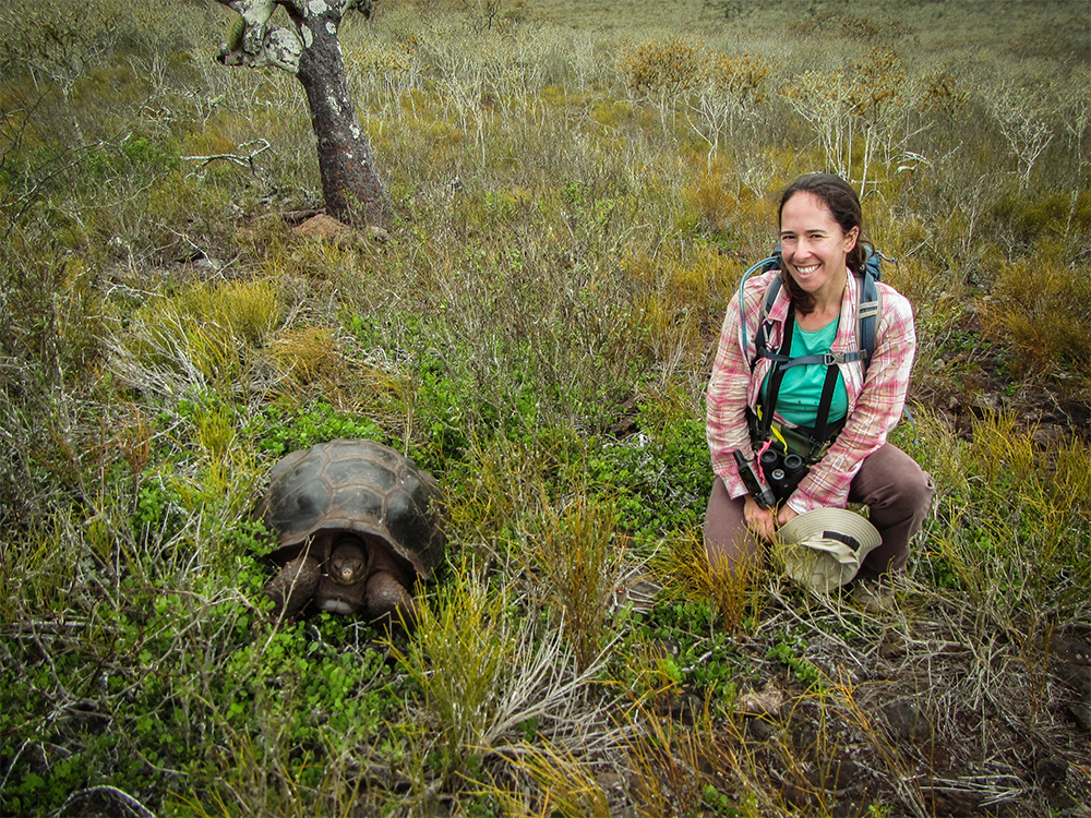 island-conservation-preventing-extinctions-wildlife-ethics-pinzon-tortoise
