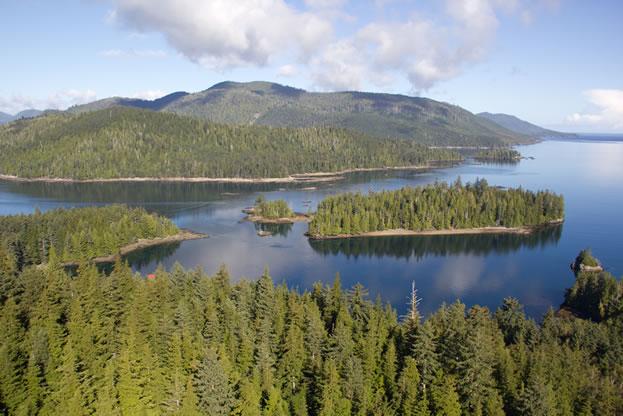 island-conservation-haida-gwaii