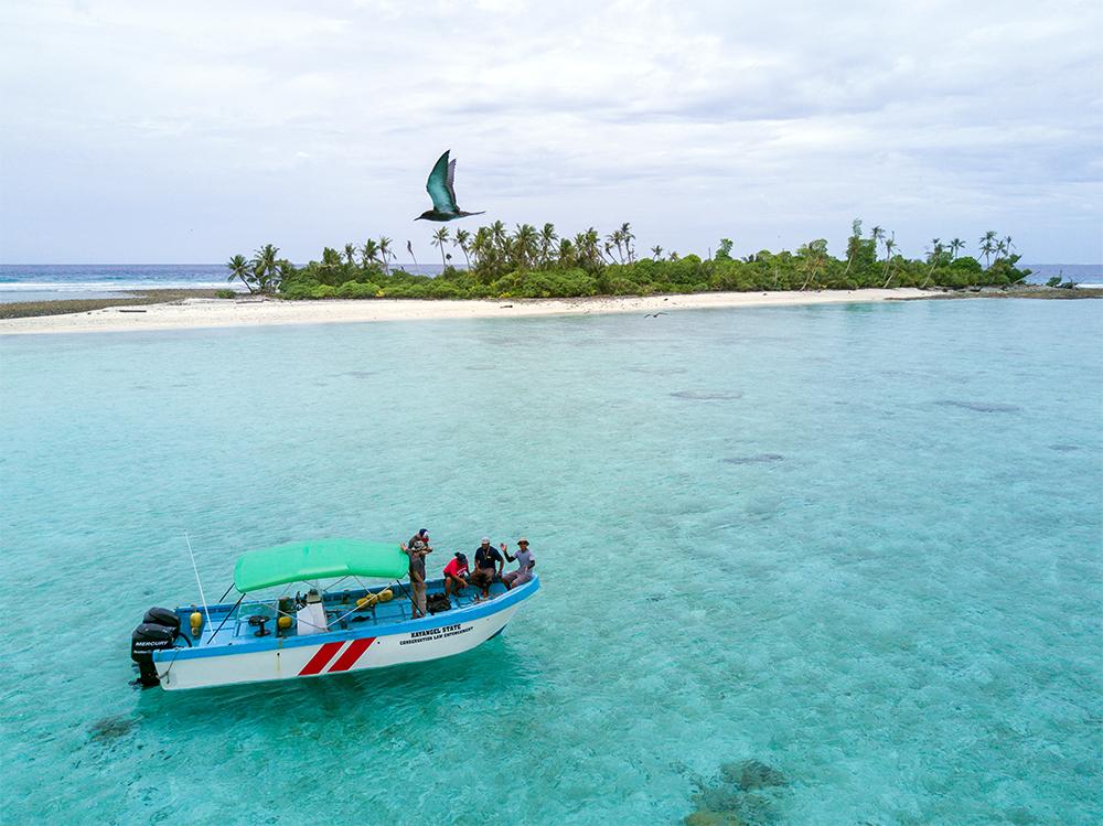 island-conservation-preventing-extinctions-kayangel-palau-offshore