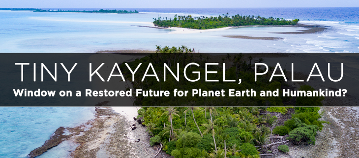 island-conservation-preventing-extinctions-kayangel-palau-revitalization-feat