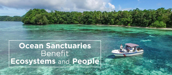 island-conservation-palau-ocean-sanctuary-feat