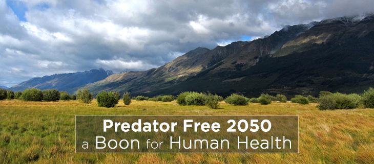 island-conservation-predator-free-2050-feat
