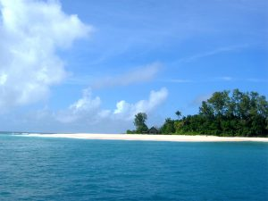 Island-conservation-invasive-species-preventing-extinctions-cousin-island-beach