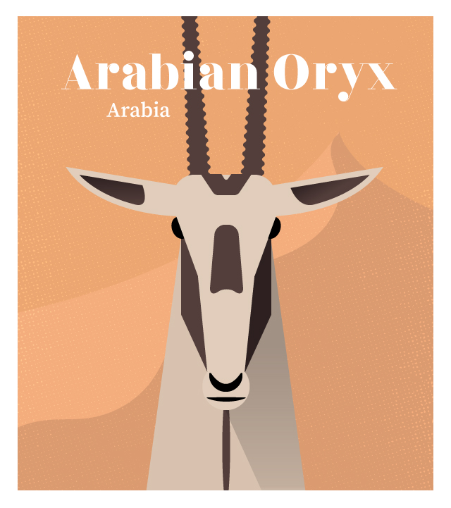 island-conservation-invasive-species-preventing-extinctions-arabian-oryx