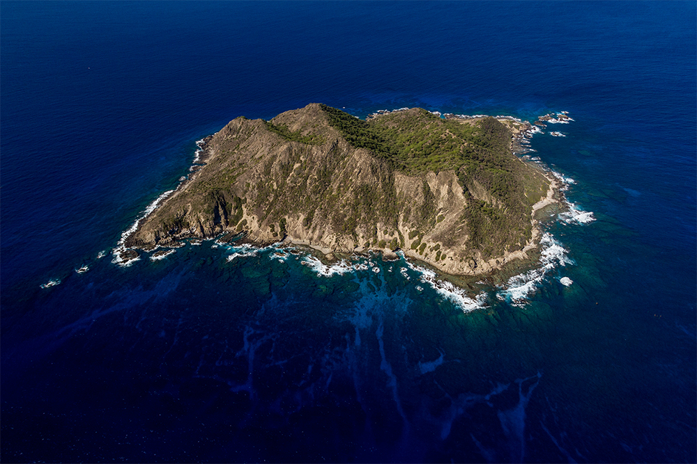 island-conservation-invasive-species-preventing-extinctions-desecheo-island-aerial-view