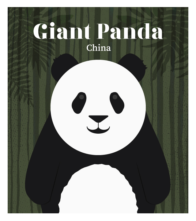 island-conservation-invasive-species-preventing-extinctions-giant-panda