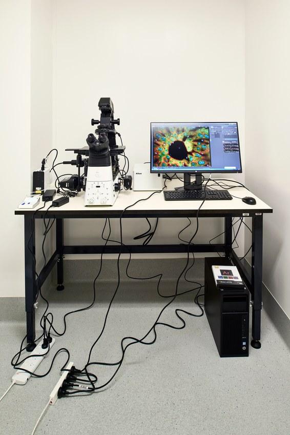 island-conservation-invasive-species-preventing-extinctions-paul-thomas-lab-microscope