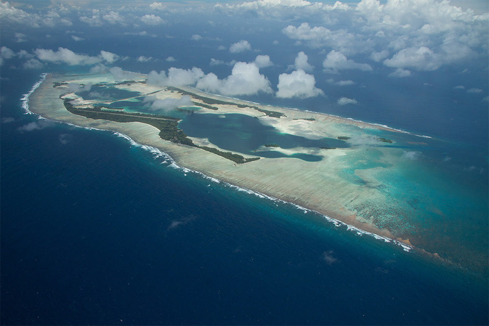 island-conservation-invasive-species-preventing-extinctions-palmyra-atoll-eradication-mosquito
