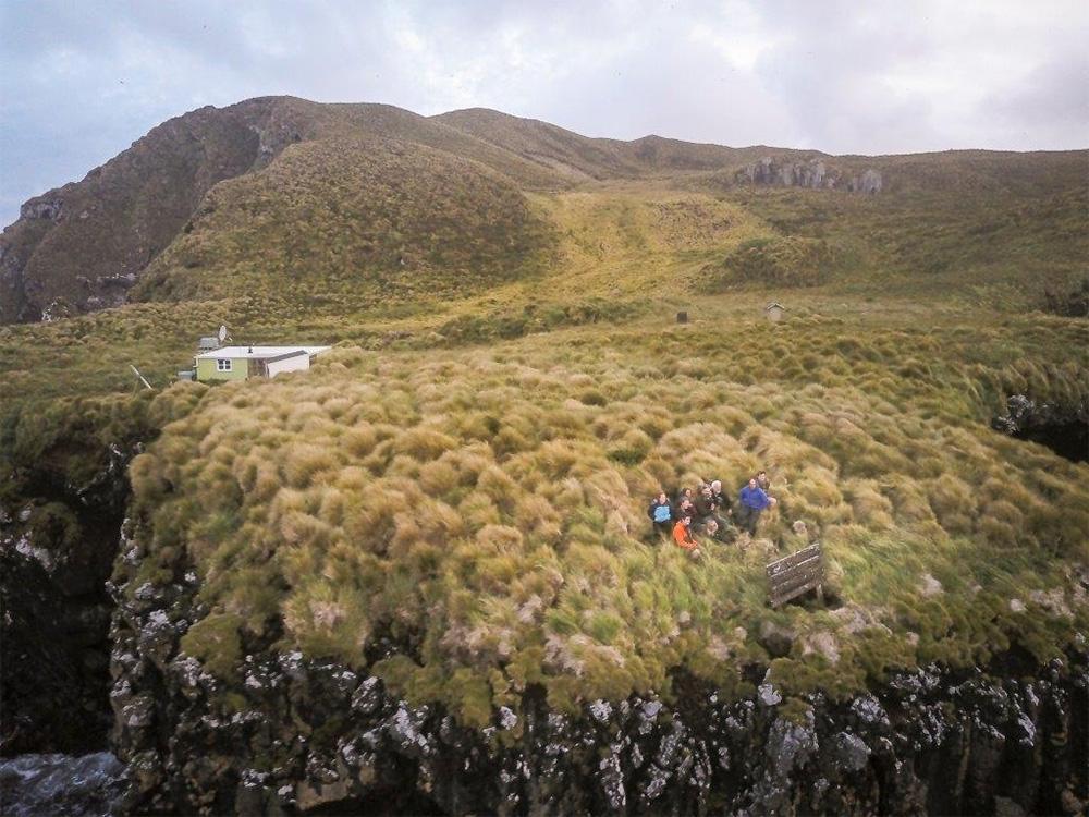 island-conservation-preventing-extinctions-invasive-species-antipodes-island-landscape