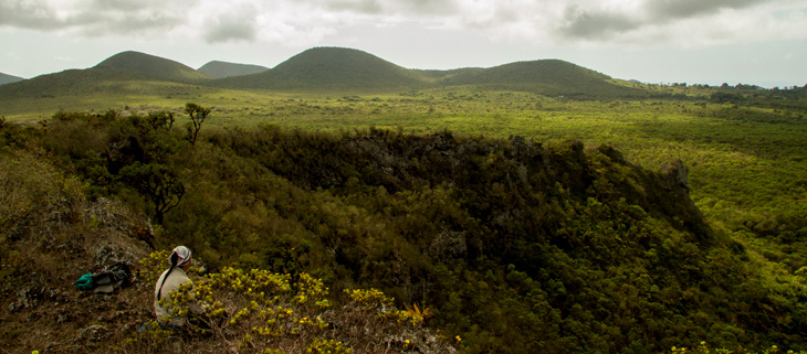 island-conservation-preventing-extinctions-invasive-species-floreana-landscape-feat
