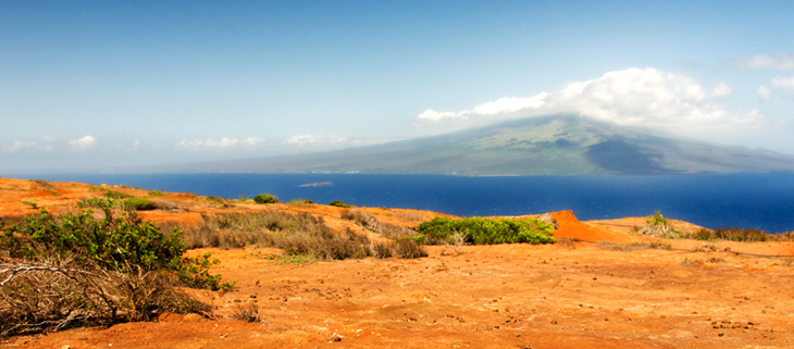 island-conservation-preventing-extinctions-invasive-species-kahoolawe-feat