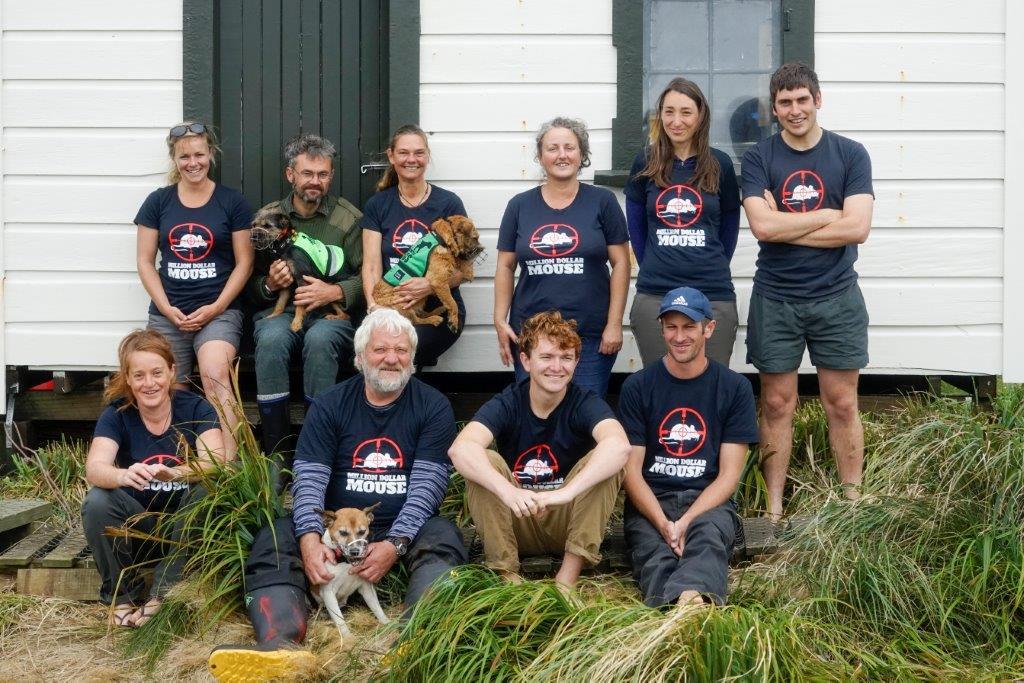 island-conservation-preventing-extinctions-invasive-species-monitoring-team