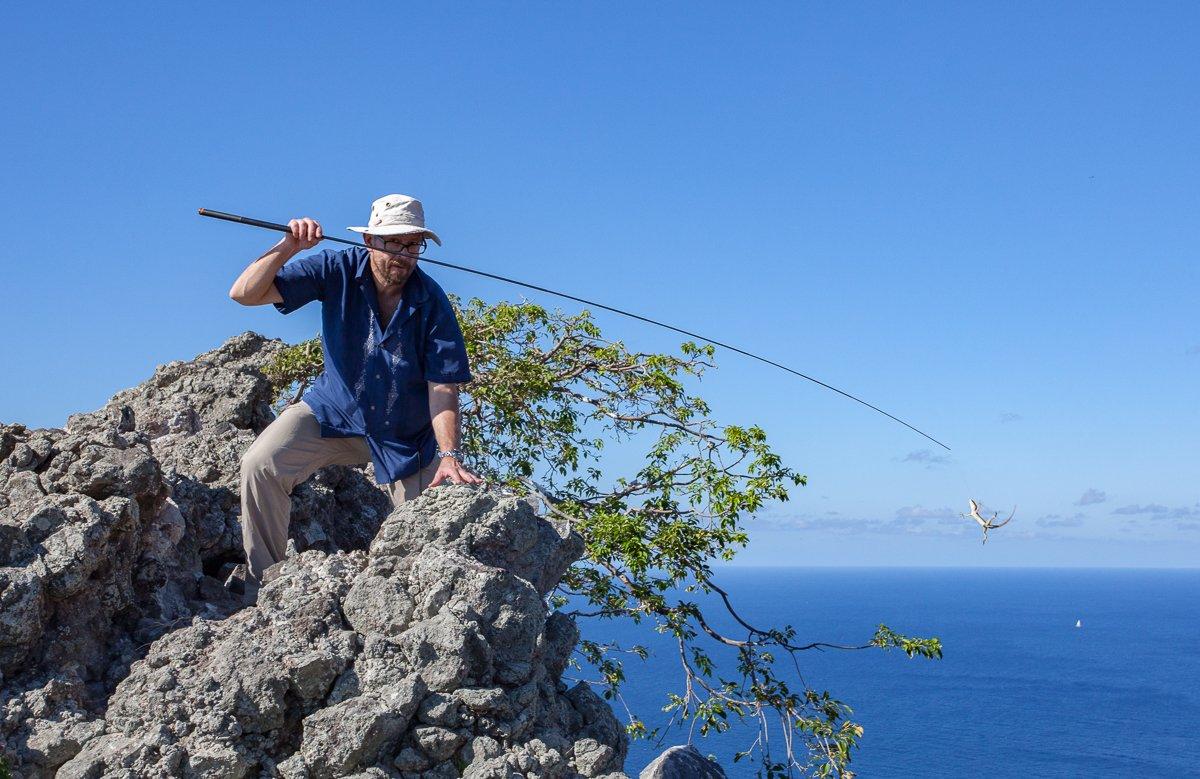 island-conservation-invasive-species-preventing-extinctions-catching-anole-redonda