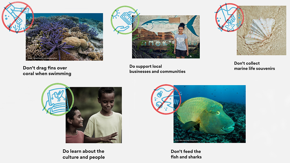 island-conservation-invasive-species-preventing-extinctions-palau-pledge-sign-pledge