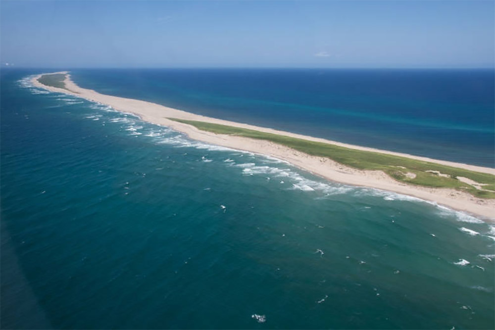 island-conservation-preventing-extinctions-invasive-species-Sable-Island